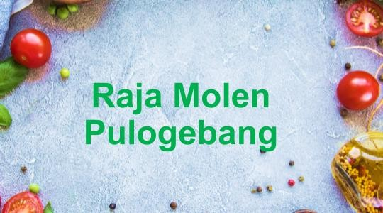 Menu & Review Raja Molen Pulogebang - Pulo Gebang