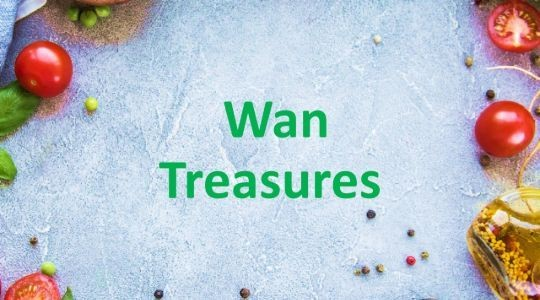 Menu & Review Wan Treasures - Kamal Muara